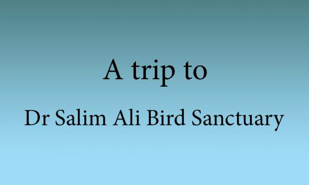 A trip to Dr Salim Ali Bird Sanctuary