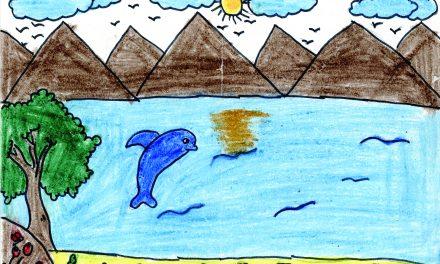 Dolphin's life