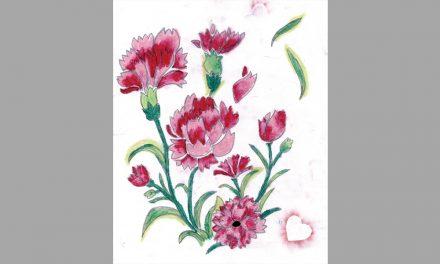 Creative Carnations