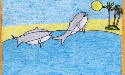 Dolphins near the coast