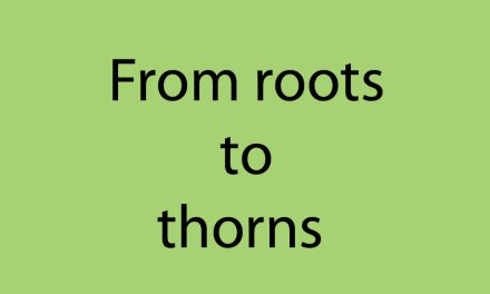 From roots to thorns