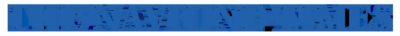 The Navhind Times Logo